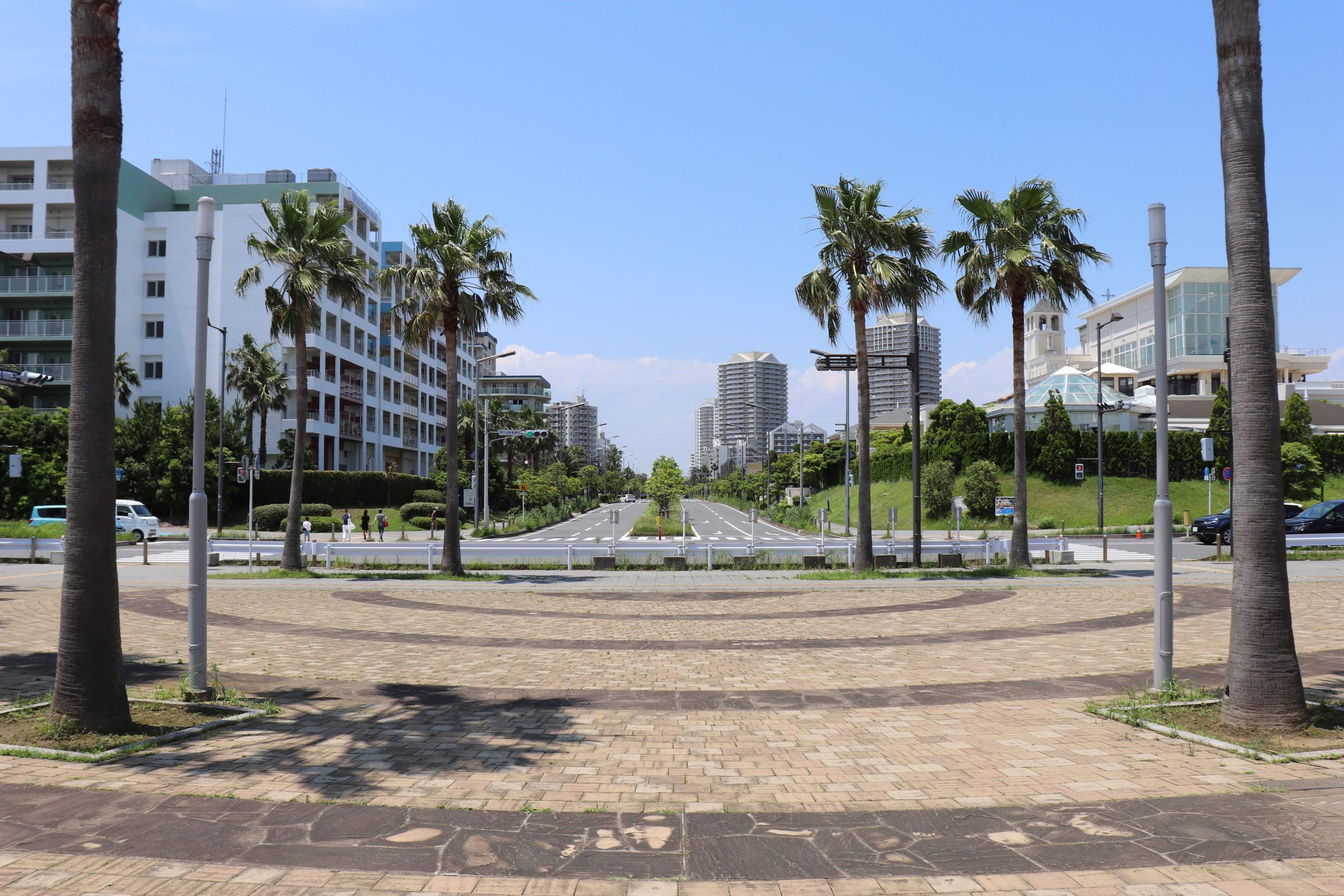 東京ベイエリアの公園